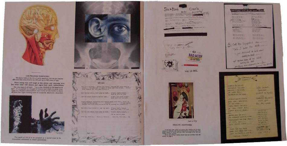 pearl jam - vitalogy - 12 u0026 39  u0026 39  black vinyl